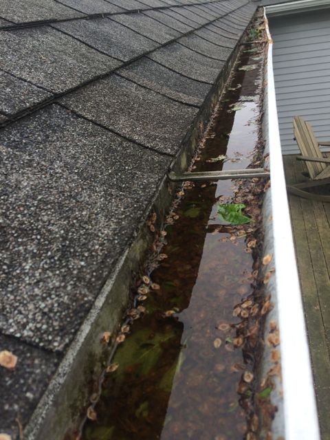We did not miss mucking gutters